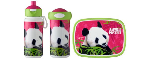 animal-planet-panda